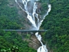Dudhsagar Falls (Sea of Milk ) is a tiered waterfall located on the Mandovi River in India, on Goa\'s border with the state of Karnataka. It is 60 km from Panaji.