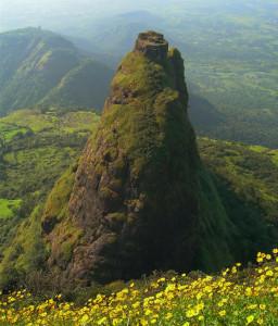 A Kalavantin-erőd már alig fedezhető fel a dús növényzetben...