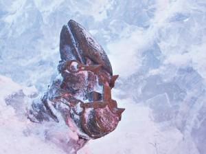 ...először egy szöges bakancs tűnt elő a hóból... (Fotó: Franco Nicolis)