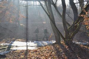 Amikor a téli Nap beragyogja a tájat és sugaraival megbolygatja a völgyekben lapuló nyirkos párapárnákat...