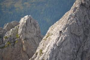 Az apró alakok a rideg sziklavilágban hálás fotótémák voltak...