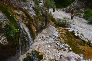 Egy kis patakocska vízeséseinél értünk le az Albához...