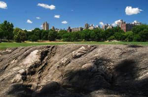 """A fák fölött mindig ott """"figyel"""" a megszokott New York..."""