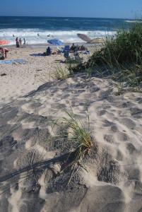 A csodálatos beach-re itt is egy dűnesoron kell átgyalogolni