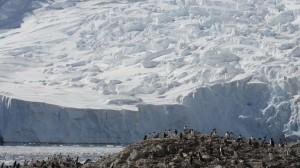 Üdvözlet az Antarktiszról... (Forrás: internet)