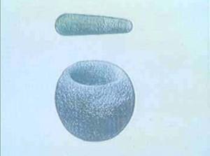 33-35 millió éves(!) kőedény